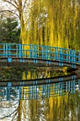 THENFORD GARDENS & ARBORETUM, NORTHAMPTONSHIRE: BLUE BRIDGE OVER LAKE, POND, WILLOW, SPRING