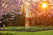 THE OLD VICARAGE, WORMLEIGHTON, WARWICKSHIRE: LAWN, PINK FLOWERS OF PRUNUS ACCOLADE, CHERRIES, GOLD ARMILLARY SPHERE, EVENING, LIGHT, SCULPTURE, FOCAL POINT, TREES, BLOSSOM, SPRING