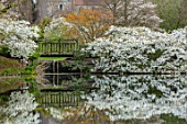 LITTLE MALVERN COURT, WORCESTERSHIRE: SPRING, LAKE, WATER, POND, POOL, BRIDGES, PRUNUS SHIROTAE, CHERRIES, CHERRY, TREES, APRIL, WHITE, BLOSSOMS, FLOWERS, REFLECTIONS, REFLECTED