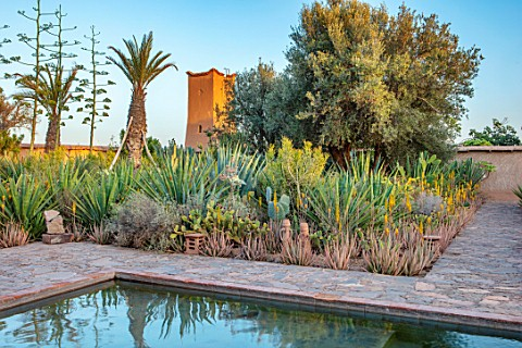 TAROUDANT_MOROCCO_DESIGNERS_ARNAUD_MAURIERES_AND_ERIC_OSSART_PRIVATE_GARDEN__SWIMMING_POOL_TERRACE_C