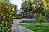 TAROUDANT, MOROCCO: DESIGNERS ARNAUD MAURIERES AND ERIC OSSART: PATH, AGAVES, YELLOW FLOWERED ALOE VERA, HOUSE, APRIL, DRY, ARID, SUCCULENTS, SWIMMING POOL