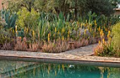 TAROUDANT, MOROCCO: DESIGNERS ARNAUD MAURIERES AND ERIC OSSART: SWIMMING POOL, BORDER WITH YELLOW FLOWERED ALOE VERA, CACTUS, CACTI, AGAVES, ARID, DRY