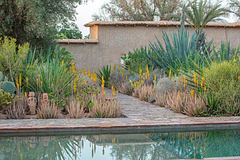 TAROUDANT_MOROCCO_DESIGNERS_ARNAUD_MAURIERES_AND_ERIC_OSSART_SWIMMING_POOL_BORDER_WITH_YELLOW_FLOWER
