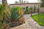 TAROUDANT, MOROCCO: DESIGNERS ARNAUD MAURIERES AND ERIC OSSART: PATH, AGAVE, YELLOW FLOWERS OF ALOE VERA, CACTUS, CACTI, ARID, DRY