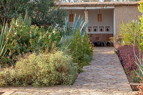 TAROUDANT_MOROCCO_DESIGNERS_ARNAUD_MAURIERES_AND_ERIC_OSSART_PATH_CACTUS_CACTI_ARID_DRY_BORDERS_SEAT