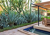 TAROUDANT, MOROCCO: DESIGNERS ARNAUD MAURIERES AND ERIC OSSART: BED OF AGAVES, SUCCULENTS, DRY, ARID, GARDENS, SEATING AREA, CANOPY, AWNING