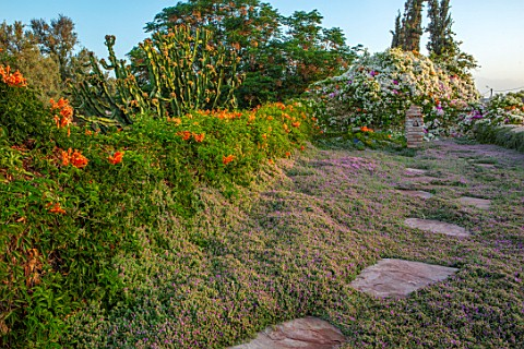 TAROUDANT_MOROCCO_DESIGNERS_ARNAUD_MAURIERES_AND_ERIC_OSSART_STEPPING_STONES_ACROSS_ROOF_GARDEN_BOUG