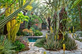 TAROUDANT, MOROCCO: DESIGNERS ARNAUD MAURIERES AND ERIC OSSART: DAR AL HOSSOUN - CACTUS, CACTI AND EXOTIC PLANTING BESIDE POOL, WATER, CANAL, ALOE VERA, TERRACES, YELLOW FLOWERS