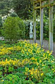 MORTON HALL, WORCESTERSHIRE: SHADY BORDER BY PERGOLA WITH YELLOW FLOWERED ERYTHRONIUMS AND EPIMEDIUM X VERSICOLOR SULPHUREUM, EVERGREENS, SHADE