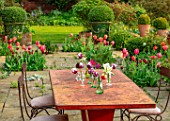 THE OLD VICARAGE, WORMLEIGHTON, WARWICKSHIRE: TABLE, CHAIRS, PATIO, TULIPS APRICOT IMPRESSION, JAN REUS, BOX BALLS IN GREEN GLAZED PLANTERS, CONTAINERS