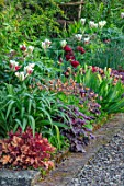 MORTON HALL, WORCESTERSHIRE: BORDER, TULIPS UNCLE TOM, FLAMING SPRING GREEN, HEUCHERA PLUM PUDDING, AUTUMN GLOW, GEUM OXFORD MARMALADE