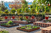 RADICEPURA GARDEN FESTIVAL, SICILY, ITALY: PROLIFILO INCONTRA CANDIDO GARDEN DESIGNED BY MARCO VOMIERO, BRICK SEATING, VEGETABLE BEDS, ORANGE TREES IN CONTAINERS ON WALL