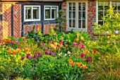 THE COACH HOUSE, SURREY, DESIGNER BARBARA BROOKS: LAWN, PATH, BORDERS WITH TULIPS, WHITE BENCH, SEAT, WALL, SPRING, GARDEN, TULIPA BALLERINA, HOLLYWOOD, NIGHTRIDER