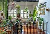 JAMIES JUNGLE, LONDON HOUSE OF JAMIE SONG: APARTMENT FILLED WITH HOUSEPLANTS. INDOORS, GREEN INTERIORS, FOLIAGE, TROPICAL
