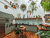 JAMIES JUNGLE, LONDON HOUSE OF JAMIE SONG: APARTMENT FILLED WITH HOUSEPLANTS. INDOORS, GREEN INTERIORS, FOLIAGE, KITCHEN