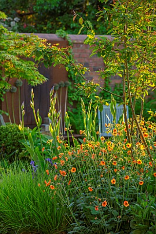 DESIGNER_JAMES_SCOTT_THE_GARDEN_COMPANY_AMELANCHIER_X_GRANDIFLORA_ROBIN_HILL_GEUM_TOTALLY_TANGERINE_