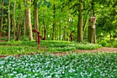 PAINSWICK ROCOCO GARDEN, GLOUCESTERSHIRE: ART UNBOUND: WOODLAND WITH WILD GARLIC, RAMSONS, ALLIUM URSINUM, WILDFLOWERS, SEATS, BENCHES, RUNNING HAREMAN BY CLARE TRENCHARD
