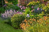 DESIGNER JAMES SCOTT, THE GARDEN COMPANY: BORDER BESIDE LAWN, GEUM TOTALLY TANGERINE, IRIS JANE PHILLIPS, ALLIUM GLADIATOR, NEPETA WLKERS LOW, BORDERS
