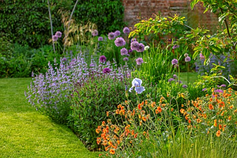 DESIGNER_JAMES_SCOTT_THE_GARDEN_COMPANY_BORDER_BESIDE_LAWN_GEUM_TOTALLY_TANGERINE_IRIS_JANE_PHILLIPS