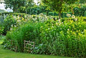 THE OLD VICARAGE, WORMLEIGHTON, WARWICKSHIRE: DESIGNER ANGEL COLLINS - BORDER, LAWN, ALLIUM MOUNT EVEREST, STACHYS LANATA BIG EARS