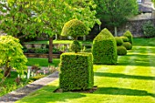 WINSON MANOR, GLOUCESTERSHIRE: LAWN, CLIPPED TOPIARY YEW, TAXUS, SUMMER, ENGLISH, COUNTRY, GARDENS, GRASS, TERRACE