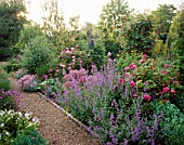 NEPETA  ALLIUMS  ROSES AND PINKS ALONG THE GRAVEL PATH AT THE ANCHORAGE  KENT.