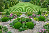 ROCKCLIFFE GARDEN, GLOUCESTERSHIRE: PATIO, TERRACE, STRIPED, STRIPES IN LAWN, BEECH OBELISKS, LAWNS, SUMMER