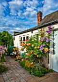THATCH COTTAGE, CROWLE, WORCESTERSHIRE: COTTAGE GARDEN, BACK DOOR, PATIO, ROSE, ROSA LADY OF SHALLOT, ENGLISH SHRUB ROSE