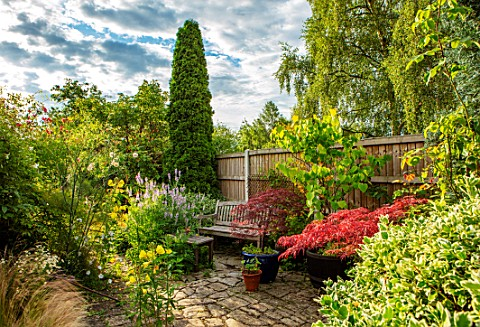 THATCH_COTTAGE_CROWLE_WORCESTERSHIRE_PATIO_FENCE_FENCING_JAPANESE_MAPLES_CERCIS_GALEGA_OFFICINALIS_E