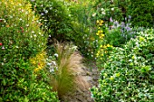 THATCH COTTAGE, CROWLE, WORCESTERSHIRE: PATH, BORDERS, STIPA TENUISSIMA, EVENING PRIMROSE, OENOTHERA, GALEGA OFFICINALIS, SALVIA