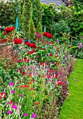 WATERDALE GARDEN, WOLVERHAMPTON, WEST MIDLANDS: RED BORDER BESIDE LAWN WITH RED ROSES, LYCHNIS CORONARIA, ACHILLEA, FOXGLOVES, ALSTROEMERIAS