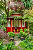 WATERDALE GARDEN, WOLVERHAMPTON, WEST MIDLANDS - ORIENTAL  JAPANESE GARDEN WITH TEA HOUSE IN RED. CLOUD PRUNED TOPIARY IN CONTAINERS, SUMMERHOUSE, OUTBUILDING, FOLLY