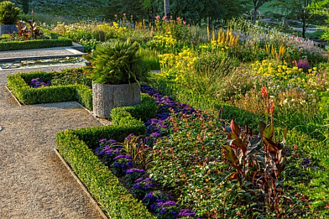 THE_NEWT_IN_SOMERSET_VICTORIAN_SCENTED_GARDEN_SALVIA_EMEBRS_WISH_CANNA_INDICA_PURPUREA_PENNISETUM_GL