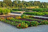 THE NEWT IN SOMERSET: THE NO DIG KITCHEN GARDEN, VEGETABLES, ORNAMENTAL, POTAGER, NASTURTIUMS