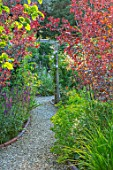 BATTS COTTAGE, OXFORDSHIRE: PATH, ARCH, PRUNUS NIGRA, LEYCESTERIA FORMOSA. ENGLISH, COUNTRY, GARDEN