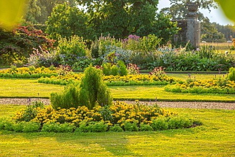 CANONS_ASHBY_NORTHAMPTONSHIRE_THE_NATIONAL_TRUST__LAWN_BEDDING_KOCHIA_TRICOPHYLLA_MARIGOLD_LEMON_ZES