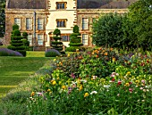 CANONS ASHBY, NORTHAMPTONSHIRE, THE NATIONAL TRUST: THE POTAGER, KITCHEN GARDEN, DAHLIA DAVID HOWARD, CLIPPED TOPIARY YEW, JULY, HELICHRYSUM KING SIZE