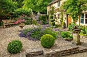 ADAMS POOL, GLOUCESTERSHIRE: COTTAGE, COURTYARD, BOX BALLS, GRAVEL, LAVANDULA ANGUSTIFOLIA, WOODEN BENCH, TOPIARY, GARDEN, COTSWOLDS