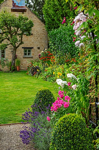ADAMS_POOL_GLOUCESTERSHIRE_BORDER_BY_LAWN_BOX_TOPIARY_PHLOX_ARCHWAY_LAWN_BORDER_COTTAGE_GARDEN_COTSW