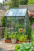 ADAMS POOL, GLOUCESTERSHIRE: SMALL GREENHOUSE IN KITCHEN GARDEN, POTAGER, SUNFLOWERS IN CONTAINERS