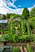 ADAMS POOL, GLOUCESTERSHIRE: ARCH, ARCHWAY, RAISED BEDS, KITCHEN GARDEN, POTAGER, SUNFLOWERS IN CONTAINERS, GREENHOUSE, COTTAGE, PATH, LAWN