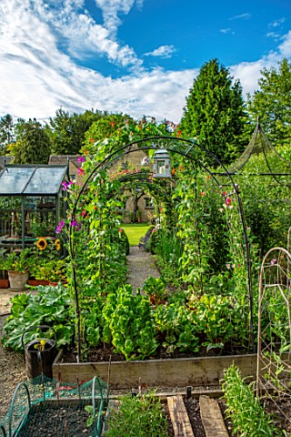 ADAMS_POOL_GLOUCESTERSHIRE_ARCH_ARCHWAY_RAISED_BEDS_KITCHEN_GARDEN_POTAGER_SUNFLOWERS_IN_CONTAINERS_