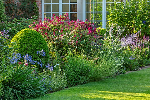 MORTON_HALL_WORCESTERSHIRE_SOUTH_GARDEN_JULY_AGAPANTHUS_BLUE_TRIUMPHATOR_CLEMATIS_VITICELLA_KERMESIN