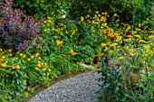 MORTON HALL GARDENS, WORCESTERSHIRE: KITCHEN GARDEN, LILIUM LEICHTLINII, INULA HOOKERI, FENNEL, COTINUS, CROCOSMIA, PATHS, JULY, SUMMER, YELLOW, FLOWERING, BORDERS