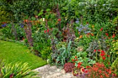 WATERDALE, WEST MIDLANDS: LAWN, BORDER WITH DAHLIAS, CROCOSMIAS, AGAPANTHUS, TRACHYCARPUS FORTUNEI. BORDERS