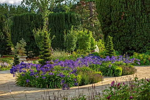 PRIVATE_GARDEN_GLOUCESTERSHIRE__DESIGNER_ANGEL_COLLINS_TERRACE_WITH_AGAPANTHUS_NAVY_BLUE_AUGUST