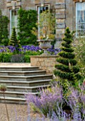PRIVATE GARDEN, GLOUCESTERSHIRE - DESIGNER ANGEL COLLINS: STEPS AND TERRACE WITH AGAPANTHUS NAVY BLUE, AUGUST