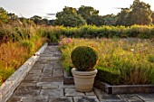 PRIVATE GARDEN, GLOUCESTERSHIRE - DESIGNER ANGEL COLLINS: ROOF TERRACE WITH WILDFLOWERS, TERRACOTTA CONTAINER WITH BOX BALL, PATIO, TERRACES, AUGUST