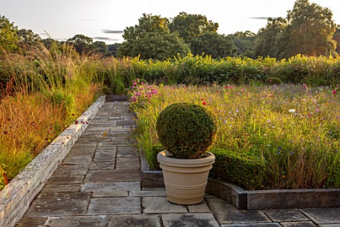 PRIVATE_GARDEN_GLOUCESTERSHIRE__DESIGNER_ANGEL_COLLINS_ROOF_TERRACE_WITH_WILDFLOWERS_TERRACOTTA_CONT
