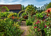 ULTING WICK, ESSEX: GRAVEL PATH, ARCH, DAHLIAS, VERBENA BONARIENSIS, BANANAS, DAHLIA HALLOWEEN, IPOMOEA KINOLAS BLACK, EXOTIC, BARN, GARDEN